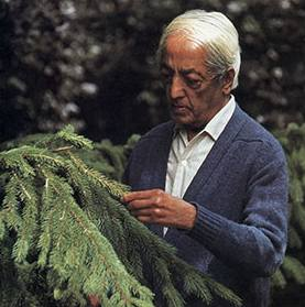 jiddu_krishnamurti_in_nature